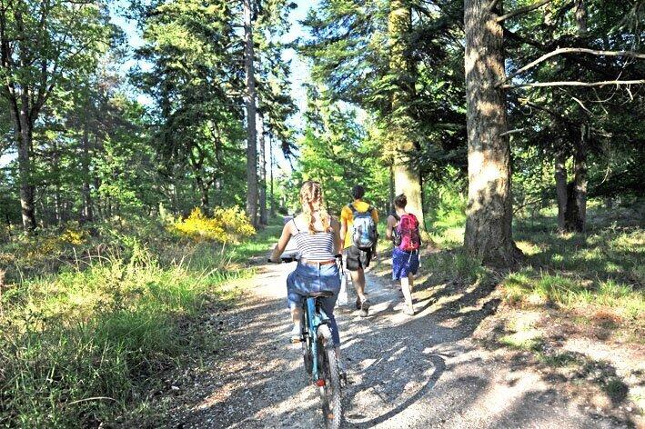 balades forêt de Fontainebleau vélo
