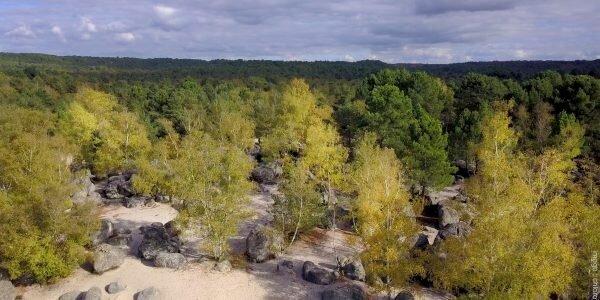Le cul du chien, bosque de Trois Pignons
