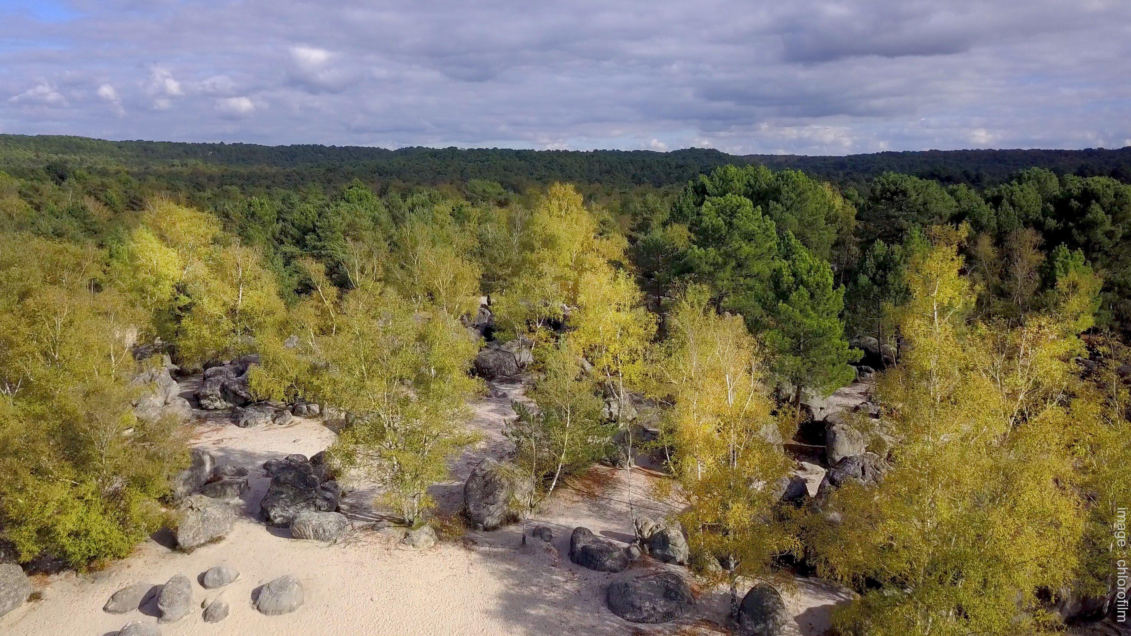 Le cul du chien, forêt des Trois Pignons