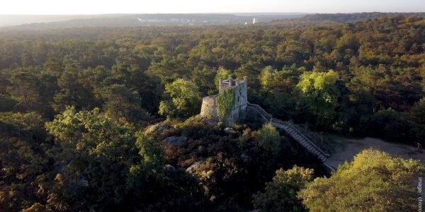 Torre Denecourt, bosque de Fontainebleau