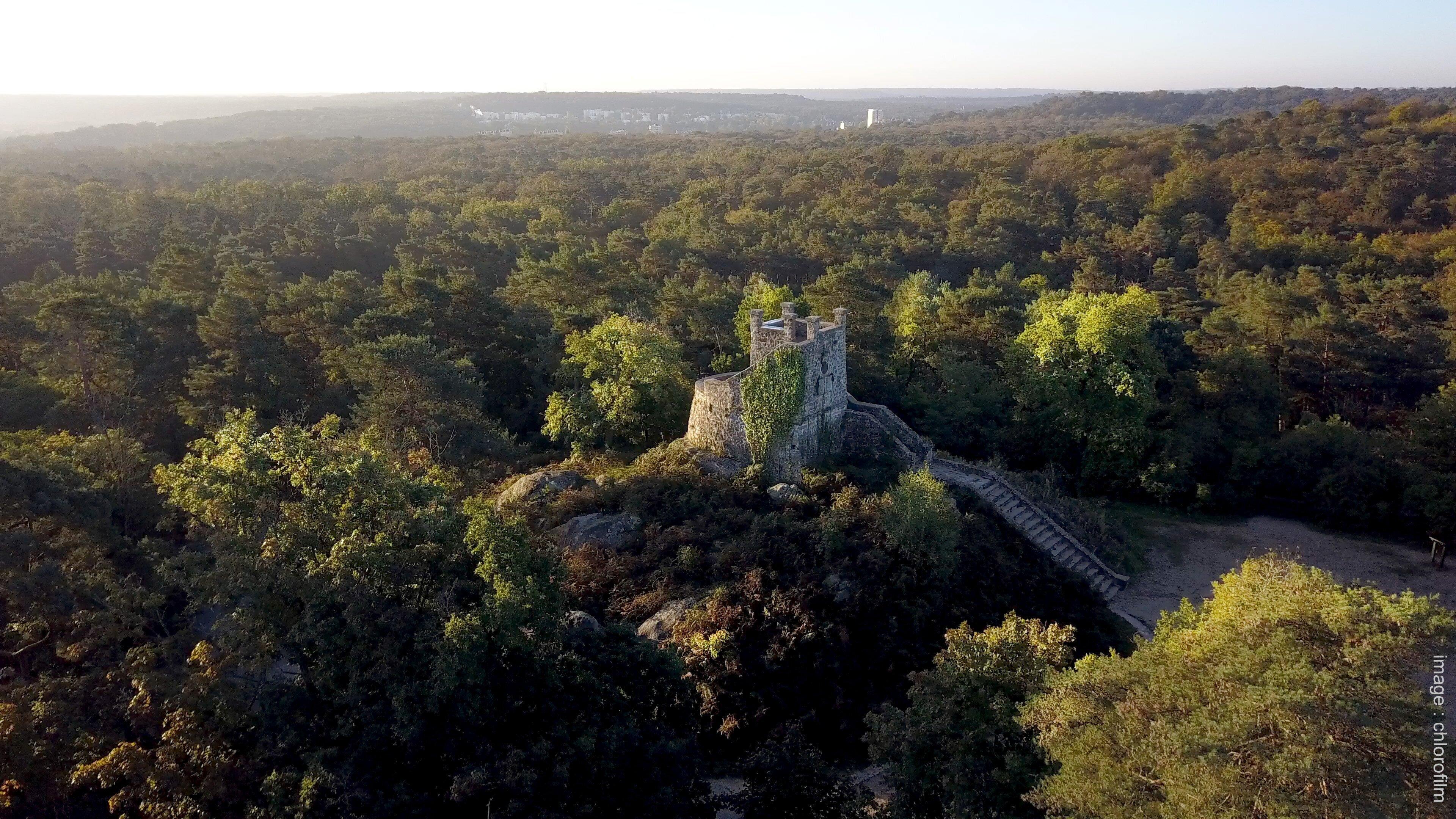 Tour Denecourt Fontainebleau Forêt