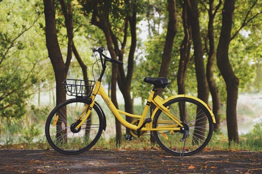 seine-et-marne vélo Fontainebleau tourisme