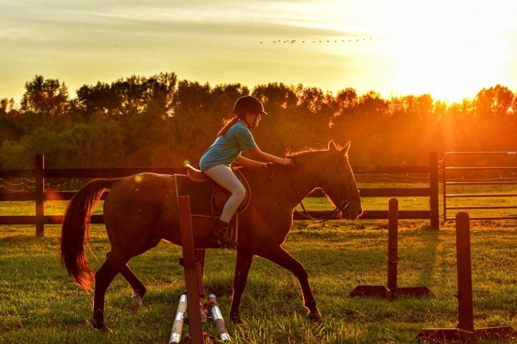 activités équitation seine-et-marne Fontainebleau tourisme
