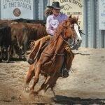 activité enfants équitation seine-et-marne
