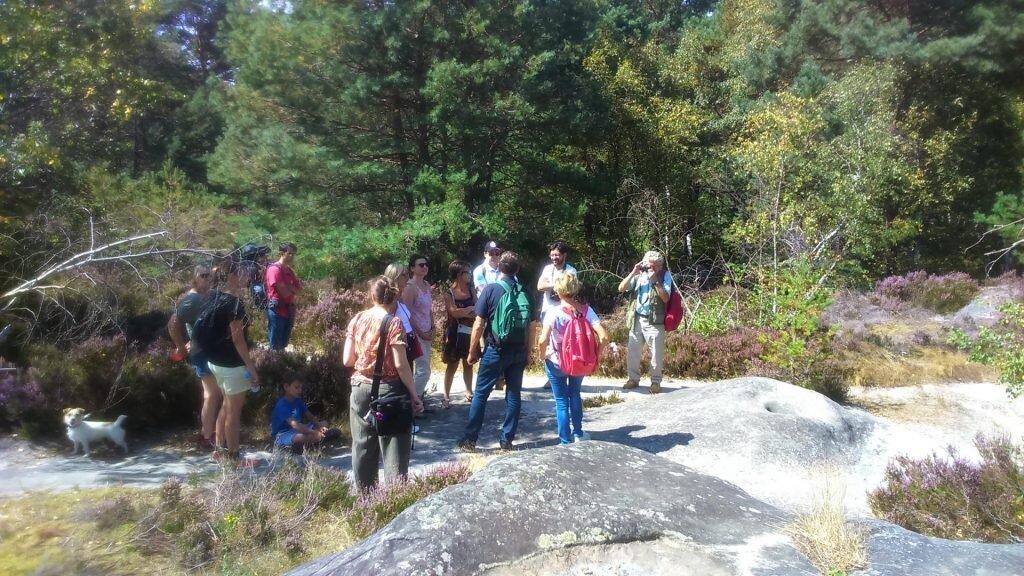 Visites groupées à Fontainebleau
