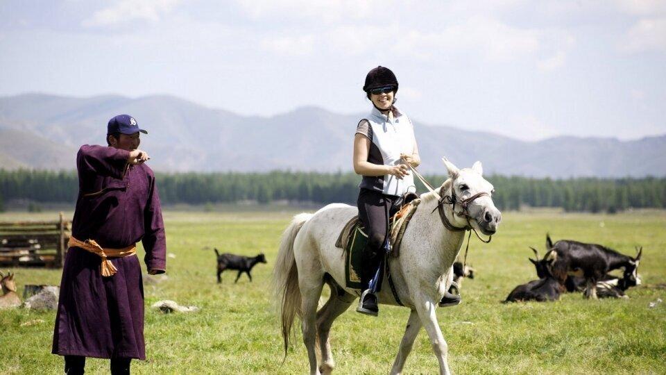 Photographie cheval Mogolie Caval&go