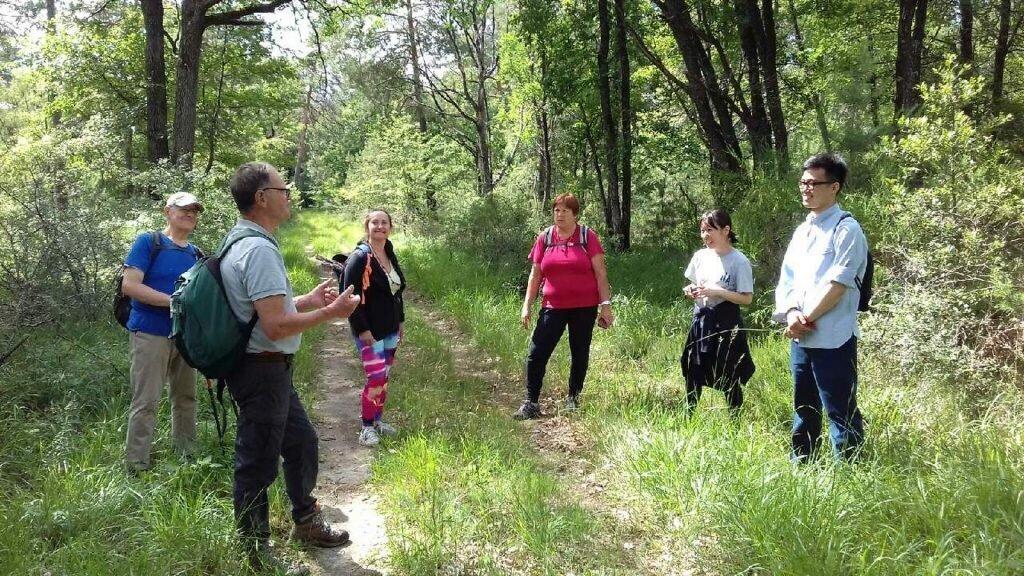 Yves Richy guide nature forêt de Fontainebleau